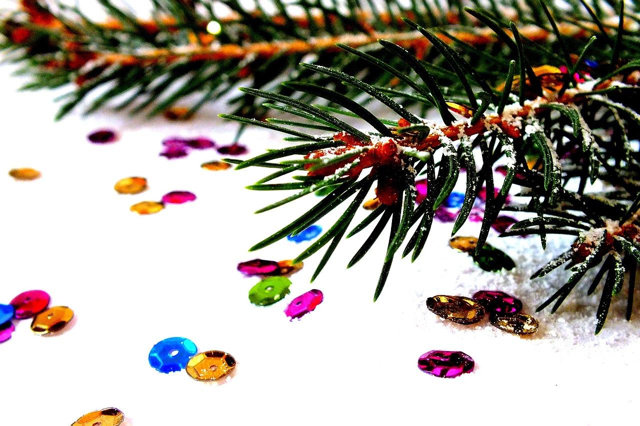 spruce-1040048_1280