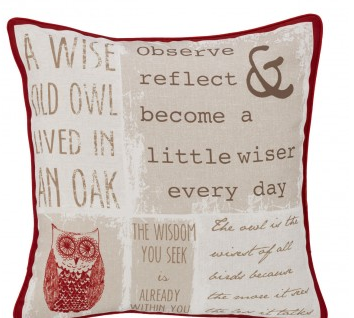 Wise Old Owl Cushion Cover
